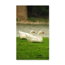 GreetingCard_Swan_1 Wall Decal