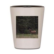 Elk: Wildlife of the Rocky Mountains (C Shot Glass