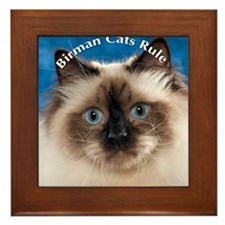 Birman Cat Magnet Framed Tile