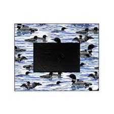 Lots of Loons Picture Frame