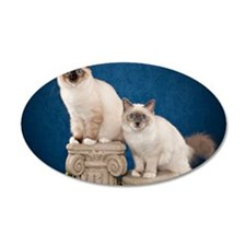 Birman Kitten Calendar Wall Decal