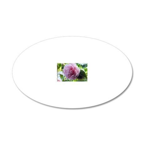 greeting-card-pink-camillia- 20x12 Oval Wall Decal
