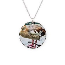 Wet Duck Necklace