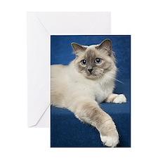 Birman Cat Note Card Greeting Card