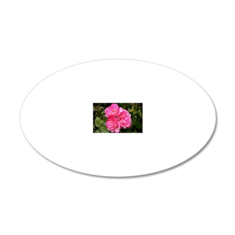 Rose, pink and white 20x12 Oval Wall Decal