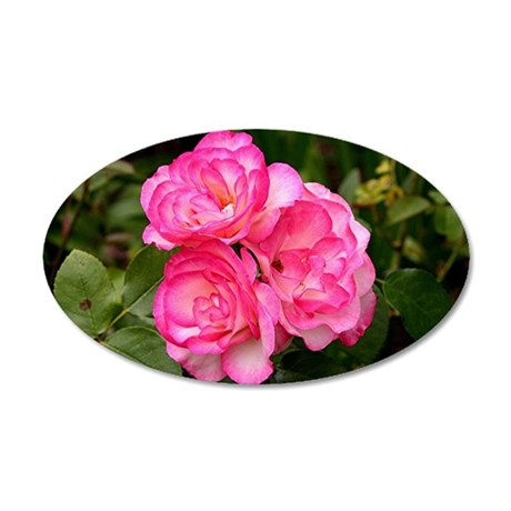 Rose, pink and white 35x21 Oval Wall Decal
