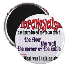 Fibromyalgia Introduction Magnet