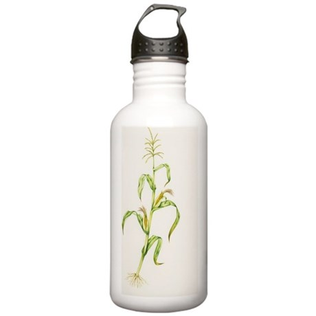 Maize (Zea mays) Stainless Water Bottle 1.0L
