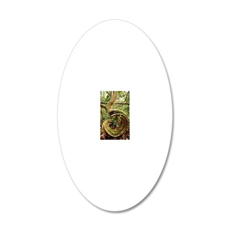 Rainforest undergrowth 20x12 Oval Wall Decal