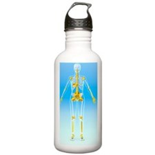 Skeleton and ligaments Water Bottle