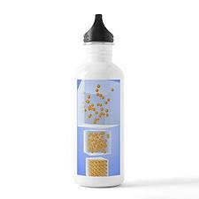 Three states of matter Water Bottle