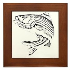 Striped Bass Framed Tile