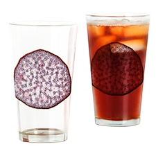 Umbrella grass stem, light microgra Drinking Glass