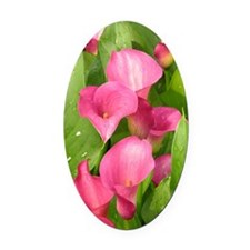 Zantedeschia 'Captain Romance' Oval Car Magnet