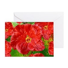 red flower 3 Greeting Card