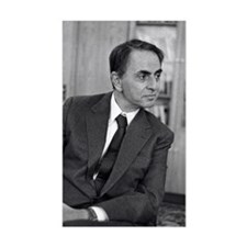 Carl Sagan, US astronomer Decal