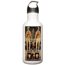 Male and female anatom Water Bottle