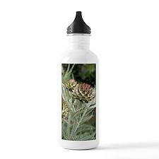 Artichoke (Cynara scol Water Bottle
