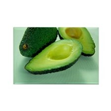 Avocados Rectangle Magnet