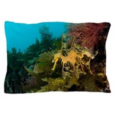 Leafy sea dragon Pillow Case