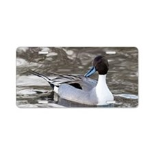 Male pintail Aluminum License Plate