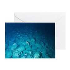 Marine archaeology Greeting Card