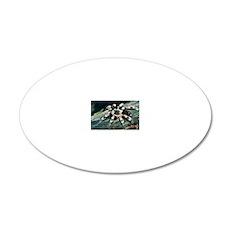 Mexican redknee tarantula 20x12 Oval Wall Decal