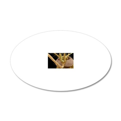 Mosquito head, SEM 20x12 Oval Wall Decal