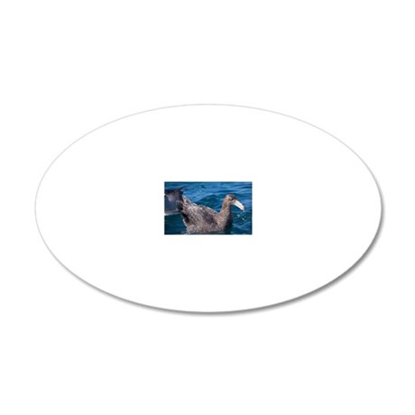 Northern giant petrel 20x12 Oval Wall Decal