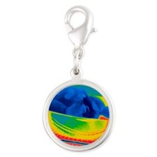 Chicken in an oven, thermogram Silver Round Charm