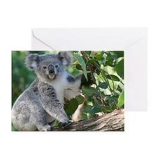 Cute koala  Greeting Card