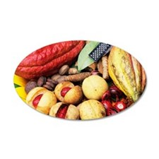 Cocoa pods and nutmeg Wall Decal