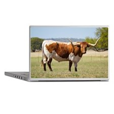 Texas longhorn cattle Laptop Skins