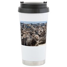 Cape Cod seal herd Ceramic Travel Mug