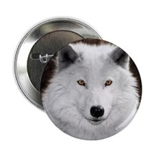 "Arctic wolf 2.25"" Button"