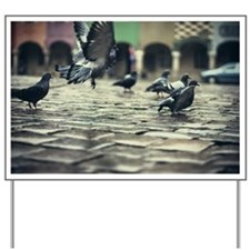 Pigeons in flight and standing on Cobble Yard Sign