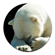 A white polar bear waking from a  Round Car Magnet