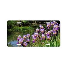 Iris flowers on river bank Aluminum License Plate