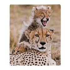 Cheetah and young cubs in forest at  Throw Blanket