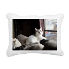 White Munchkin male kitt Rectangular Canvas Pillow