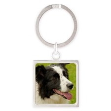 Border collie with tongue out. Square Keychain