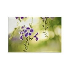 Purple flower with green leaves o Rectangle Magnet