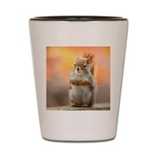 Close up of squirrel sitting on deck ra Shot Glass