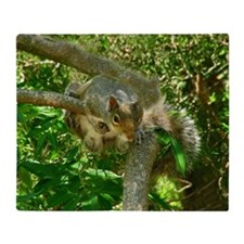 Eastern gray squirrel on tree branch Throw Blanket