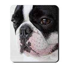 Cry dog Mousepad