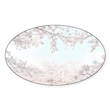 cherry blossoms Decal