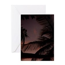 Palm tree on beach at sunset Greeting Card
