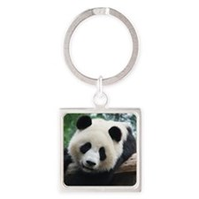 Panda leaning in front of wood. Square Keychain