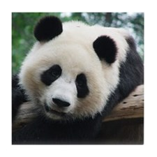 Panda leaning in front of wood. Tile Coaster