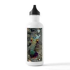Peacock mantis shrimp Water Bottle